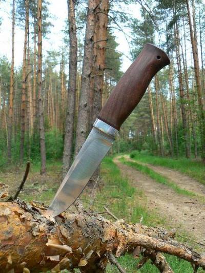 В Тамбовском районе мужчина зарезал знакомого и закопал в лесу