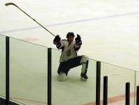 Тамбовских хоккеистов подбодрят кричалками о выборах