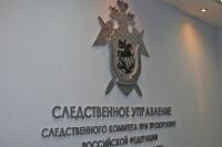 Тамбовские следователи просят помощи в раскрытии убийства Светланы Сироткиной