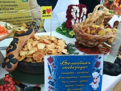 Котовск награжден за самое креативное блюдо из картошки на Покровской ярмарке