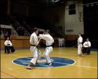 Сборная Тамбова заняла второе место на турнире по карате