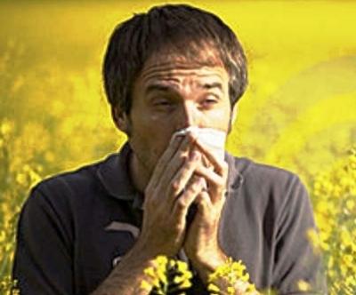 Чукотка – рай для аллергиков