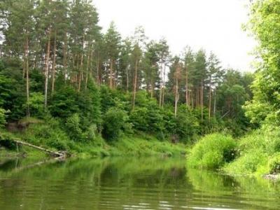 40 тыс. га тамбовской земли пополнят особо охраняемые природные территории