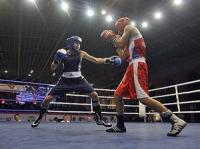 В Тамбове пройдет турнир по боксу