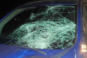 В Тамбовской области насмерть сбили пешехода