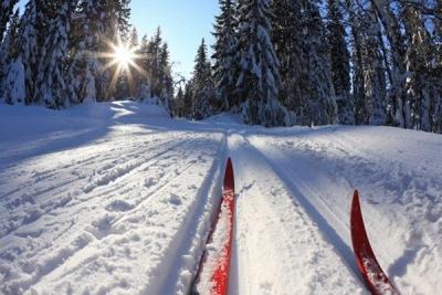 В Мичуринске прошла лыжная гонка, посвященная памяти Александра Кузьмина