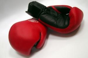 В Тамбове пройдёт всероссийский турнир по боксу