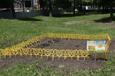 На центральной аллее городского парка Тамбова высадили тыкву