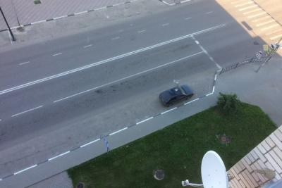 В Тамбове на автомобиль упал кирпич: полиция ищет очевидцев
