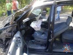 Два трупа и двое пострадавших – таков результат аварии на дороге в Тамбовском районе