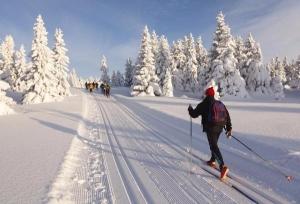 """Участниками """"Лыжни наукограда"""" станут более 80 спортсменов"""
