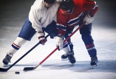Первенство ВХЛ начнется с матча хоккейных команд «Тамбов» и «Ростов»