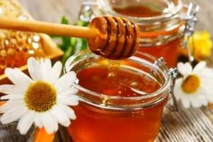 Правительство решило избавить российский мед от антибиотиков